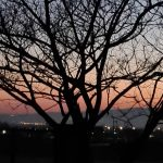 Ιστορία Νο1: Της Κυριακής, η πιο ωραία βόλτα