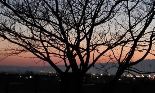 η πιο ωραία βόλτα της κυριακής που ξεκινάω με στόχο το δέντρο